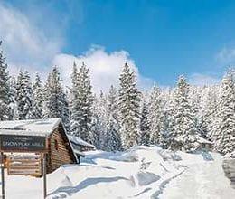 Granlibakken Lake Tahoe cross country ski center entrance