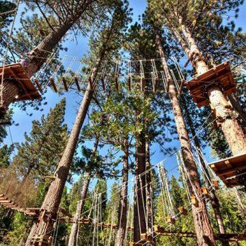 Treetop adventure park rope walkway in Lake Tahoe