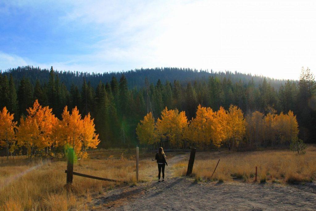 Fall North Lake Tahoe