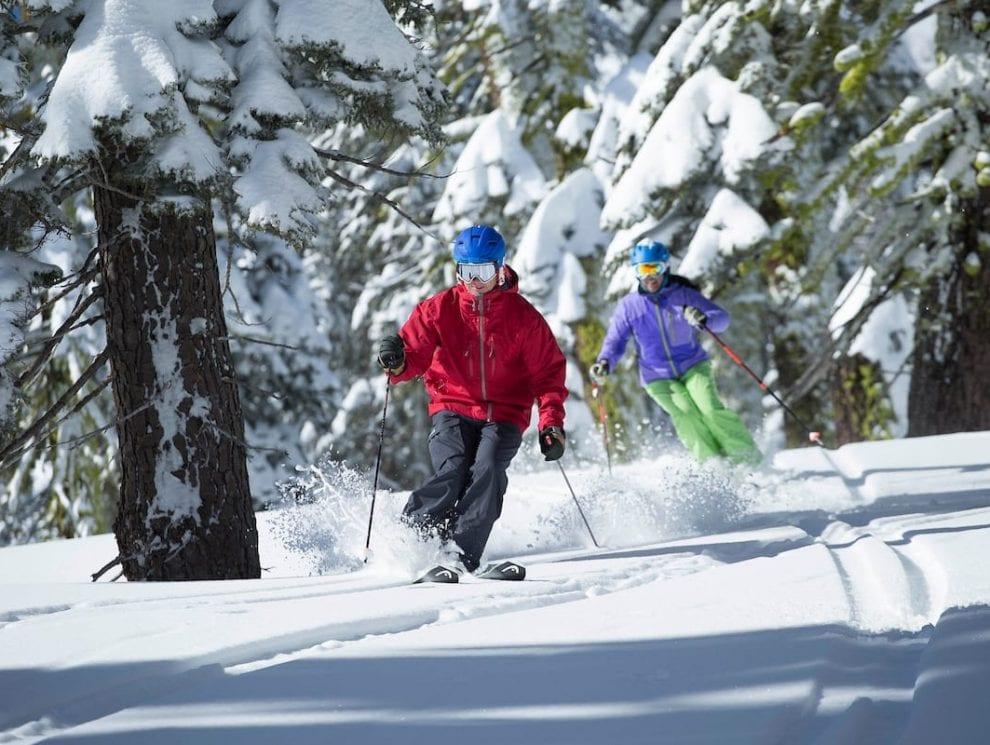Alpine Meadows Tree Skiing