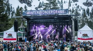 Six Reasons You Can't Miss WinterWonderGrass 2019