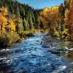 Truckee River in the Fall
